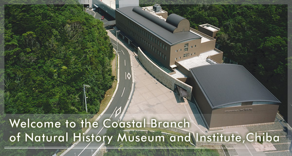 Coastal Branch of Natural History Museum and Institute